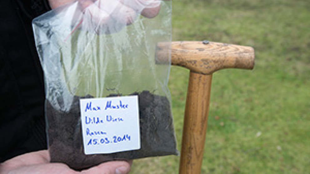 gelber rollrasen garten frage und antwort wochenblatt f r landwirtschaft landleben. Black Bedroom Furniture Sets. Home Design Ideas