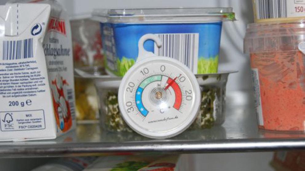 Kühlschrank Alarm : Thermometer für den kühlschrank haus haushalt landleben