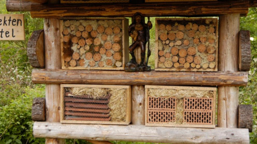 wer baut das beste bienenhotel nachrichten landwirtschaft wochenblatt f r landwirtschaft. Black Bedroom Furniture Sets. Home Design Ideas