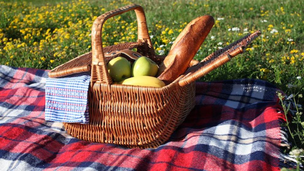 tipps f r ein tolles picknick nachrichten landleben wochenblatt f r landwirtschaft landleben. Black Bedroom Furniture Sets. Home Design Ideas
